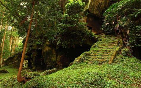 forest path wallpaper hd - HD Desktop Wallpapers   4k HD