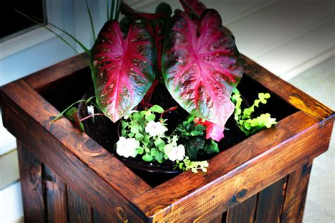 ana white planter box  pallets diy projects