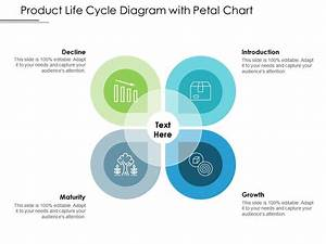 Product Life Cycle Diagram With Petal Chart