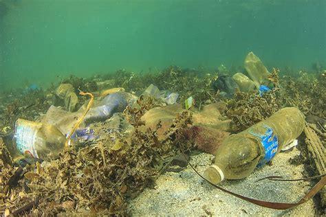 types  marine pollution worldatlascom