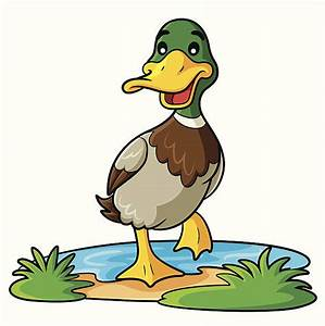 Duck Clip Art, Vector Images & Illustrations - iStock