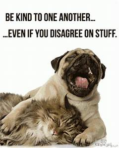 Be kind to one another... ...Even if you disagree on stuff.