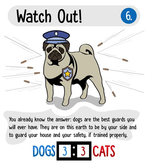 dogs better cats than why reasons awesome infographic displayed stand don companions