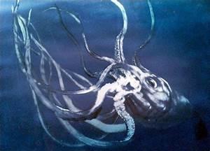 Lost Tapes Kraken | Lost Tapes | Animal Planet