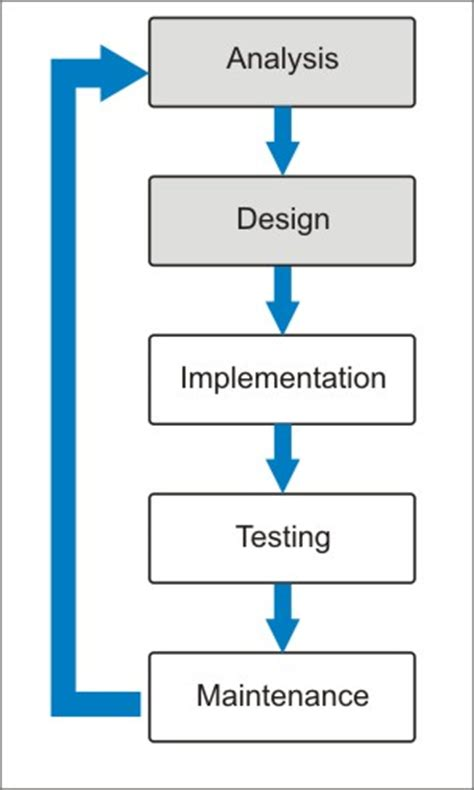 phases  web development life cycle website