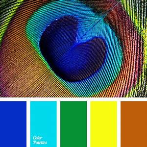 What Is Violet In Light As A Feather Colors Of Peacock Feathers Color Palette Ideas