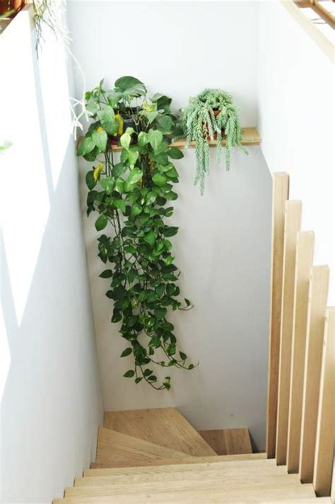 becbeaaffafb deco escalier