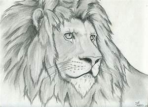 Imagenes de leones para colorear My Blog