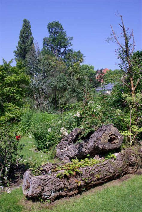 Botanischer Garten Erlangen by Ausflugsziel Botanischer Garten Der Universit 228 T Erlangen
