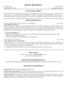 senior information technology manager resume sle portfolios senior vice president of it chief information officer resume sles regulatory
