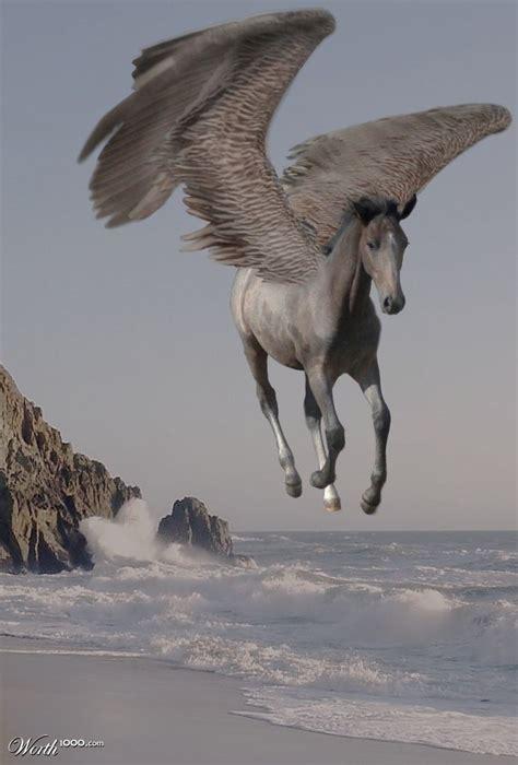 darkleaf in the vein baby peg worth1000 contests the guardian herd book series unicorn
