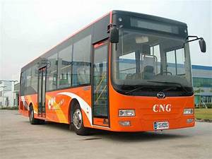 China City Bus (FDG6121F) - China Bus, City Bus