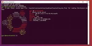 Make Bash On Ubuntu On Windows 10 Look Like The Ubuntu