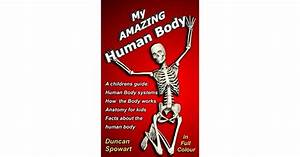 My Amazing Human Body  A Childrens Guide  Human Body