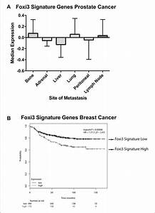 Foxi3 Signature Genes In Prostate And Breast Cancer