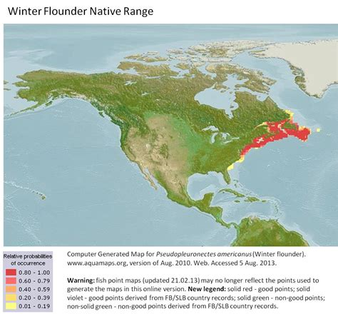 flounder winter habitat range native americanus efforts restoration