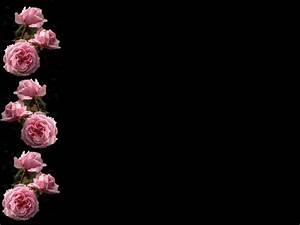 Pink Rose Wallpaper Border 3 Desktop Background ...