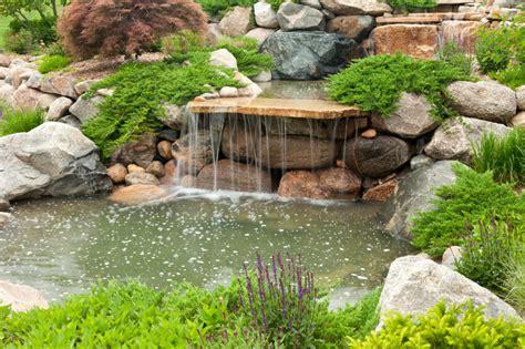 50 Pictures Of Backyard Garden Waterfalls (ideas & Designs. Farmhouse Dresser. Light Kitchen Cabinets. Cedar Rustic Fence. Lowes Wall Mirrors. San Rr Com. Oak Cabinets. Ivory Homes Utah. Window Design Group