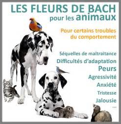 les fleurs de bach With affiche chambre bébé avec fleur de bach stress