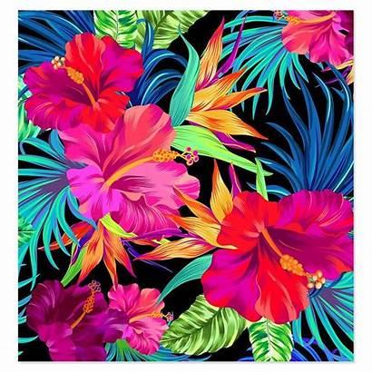 Tropical Floral Flower Flowers Prints Patterns Pattern