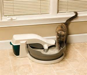 auto cat litter box cleaner 5 reasons to automatic litter boxes petsafe 174 articles