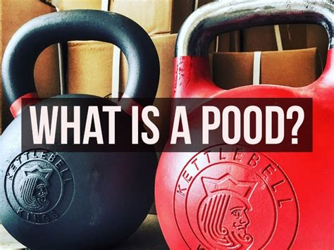 pood kettlebell guide kings