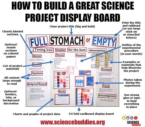 Diagram For Science Fair Project by The 25 Best Science Fair Board Layout Ideas On