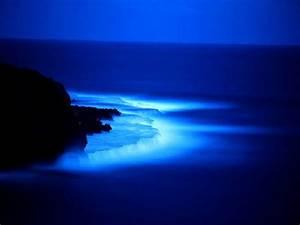 blue-sea-at-night-wallpaper - Friends Korner Urdu Photo ...