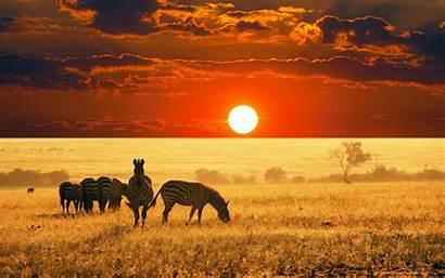 Amazing Sunsets Sunset Sun Sets Casa Grande