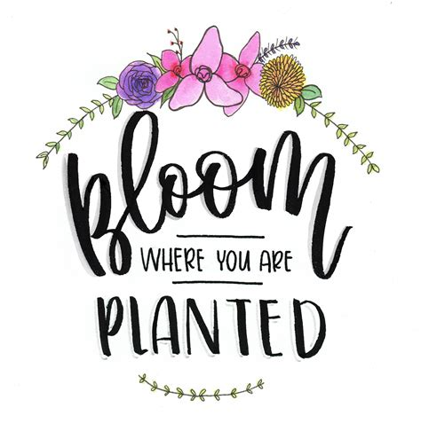 A handlettered svg is truly the perfect helping hand for the project you're working on or the gift you're hoping to create for a loved one. Bloom Where You Are Planted | Skillshare Projects