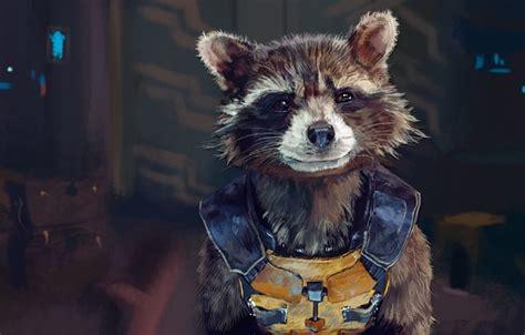 raccoon screensavers  wallpaper wallpapersafari