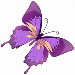 Butterfly Clip Art - Cliparts.co