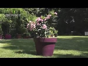 Comment Remplir Une Grande Jardinière : laurier rose plantation et entretien jardinerie truffaut tv youtube ~ Melissatoandfro.com Idées de Décoration