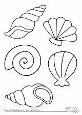 Colouring Shell Coloring Pages Seashell Sea Beach Shells Printable Summer Seaside Drawing Colour Activityvillage Easy Template Activity Village Drawings Print sketch template