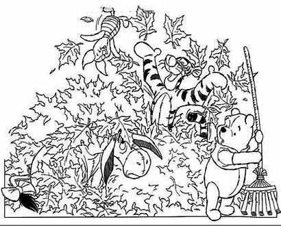 Pooh Fall Winnie Disney Coloring Pages Z31
