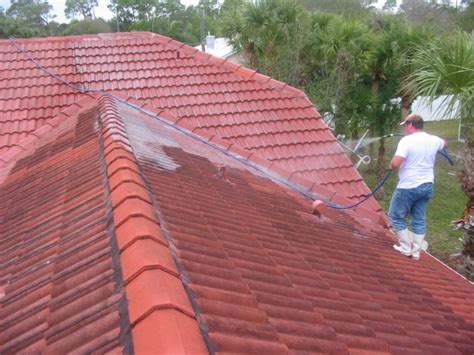 roof shoo roof cleaning contractors roof cleaning