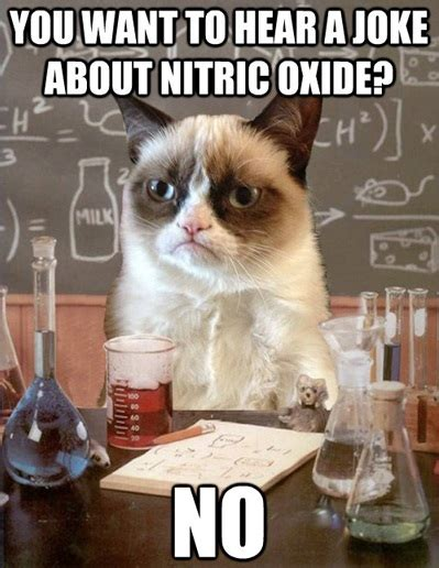Science Cat Meme - introducing your kids to chemistry nerdy with children