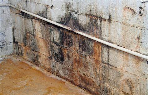 rid  mold odors   basement orange