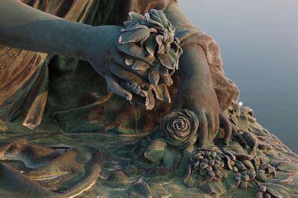 en images une annee dans les jardins de versailles