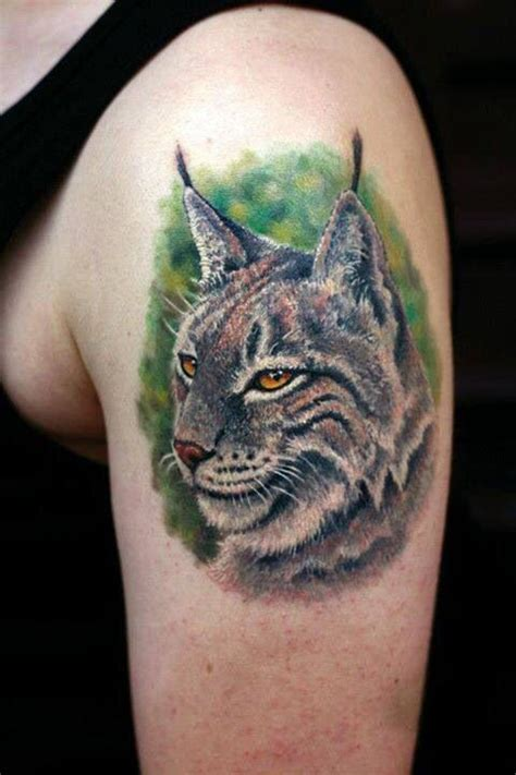 bobcat tattoo images pictures  design ideas