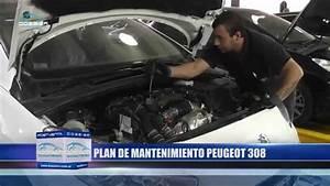 Mantenimiento Programado Peugeot 308