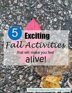 5 Exciting Fall Activities that will make you feel alive ...