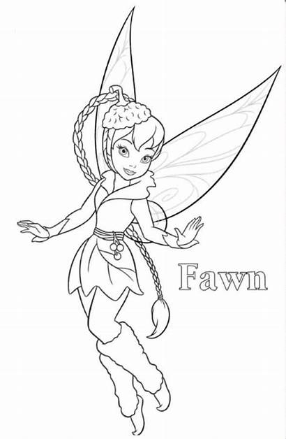Fawn Tinkerbell Coloring Pages Fairies Disney Fairy