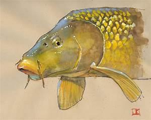 drawing flies 365: Drawing Fish 52_13 Golden Bone