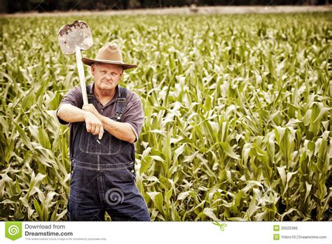Vintage Old Farmer In The Corn Fields Royalty Free Stock