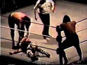 WWF in San Jose (January 14th, 1994) (handheld)