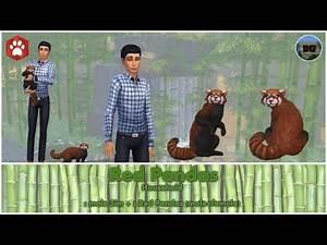 Bakies The Sims 4 Create A Pet: Red Panda 🐼