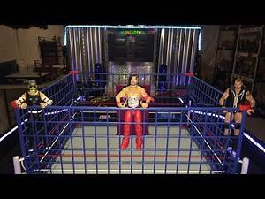 WWE Triple Threat CAGE Match!! Orton! Hardy! Nakamura! wwe action figure match