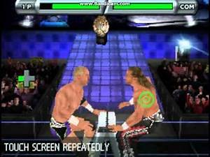 WWE Smackdown vs. Raw 2009 (DS) - Hardcore Holly vs. Shawn Michaels (Ladder Match)