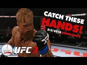 nL HIGHLIGHTS - Punch Face Extravaganza w/ FORD Ogle! (UFC 3 2/3/2018)